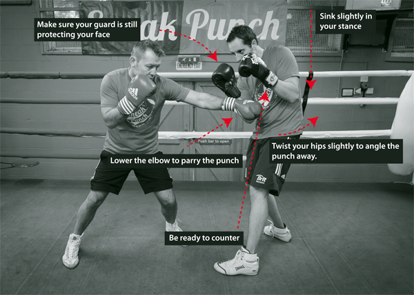 The Forearm Parrying, the Low Punch
